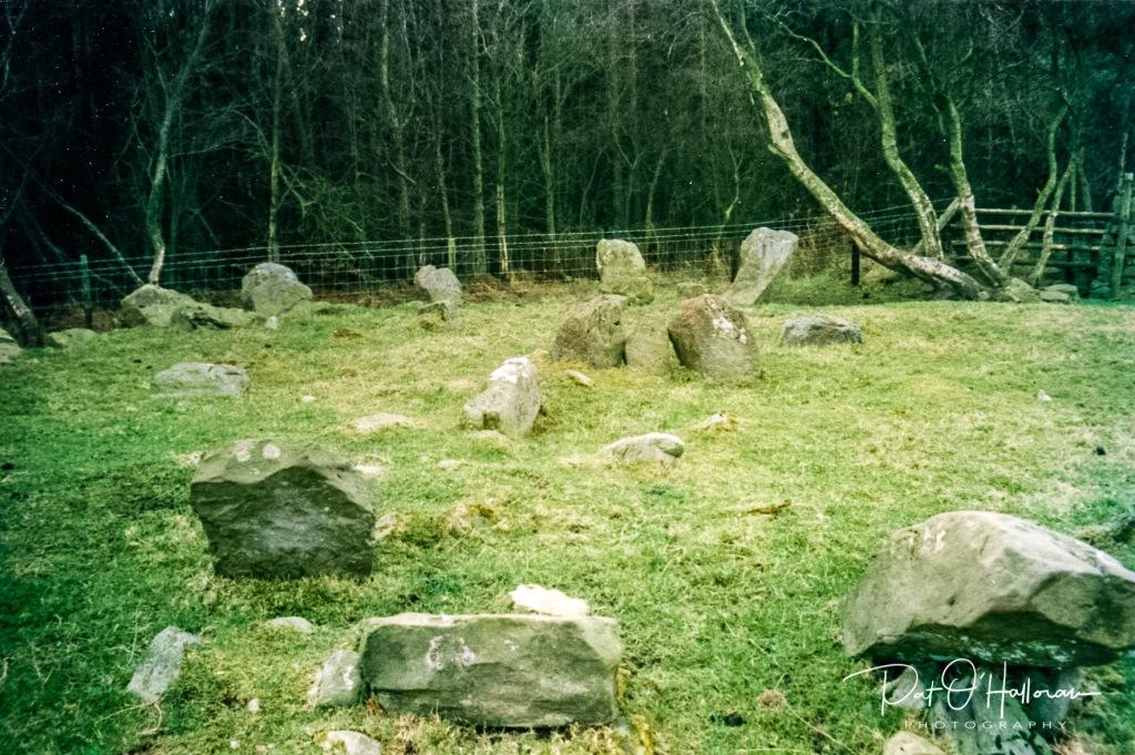 Druid's Circle